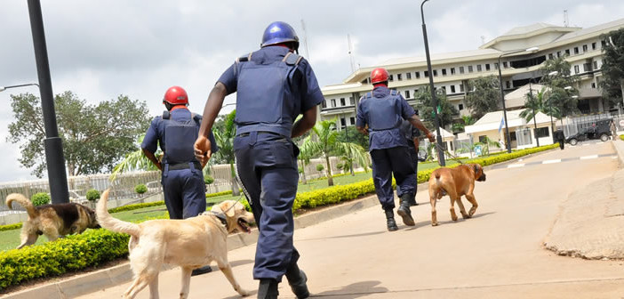 40 Oil Thieves arrested in Bayelsa by NSCDC officials