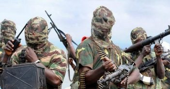Niger-Deltans Are Ready to Support Buhari to Fight the Avengers - Ayiri Emami