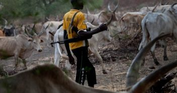 No One Can Stop Us From Grazing in the South - Fulani Herdsmen