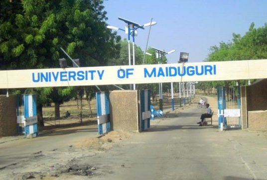 Lives lost as University of Maiduguri gets attacked by suicide bombers