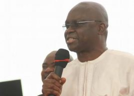 How Fayose, Fani-Kayode, and Others Supported Military Deployment Under Jonathan