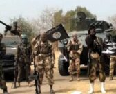 Just In: Boko Haram Currently Attacking Borno Community